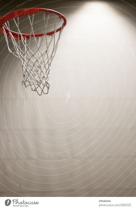 Das Runde muss ins Runde Fitness Sport-Training Ballsport Sportveranstaltung Sportstätten Spielen rund Basketball Basketballkorb Basketballplatz Halle