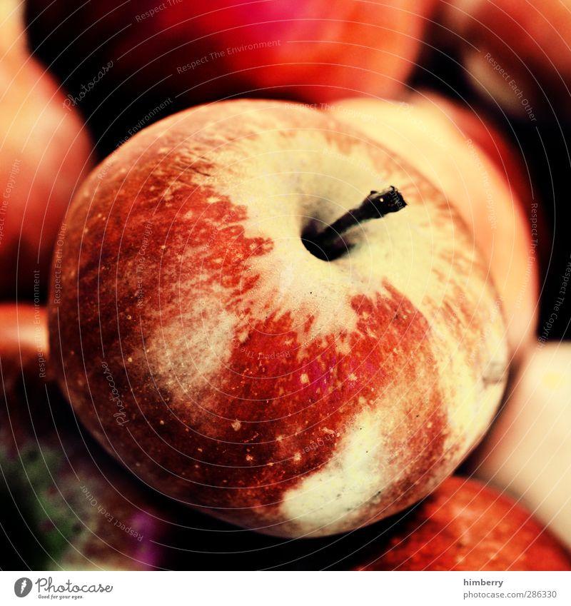 apple Natur schön Stil Essen Gesundheit Gesunde Ernährung Frucht Lebensmittel Design süß Fitness lecker Bioprodukte Diät Picknick