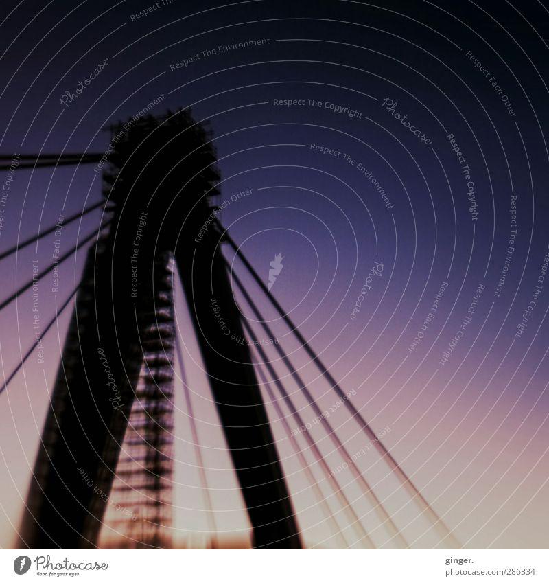 Köln UT 10/12 | Övver die half Kölle jöck Brücke Bauwerk festhalten Verlauf Stahlkabel Baugerüst hoch Reparatur spannen Spannung violett rosa eingerüstet viele