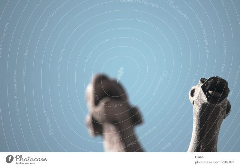 Qual! | Cerbères Hund Stadt Tier Traurigkeit Kunst Angst historisch Tiergesicht Leidenschaft Schmerz Stress schreien Verzweiflung Skulptur Nervosität Frustration