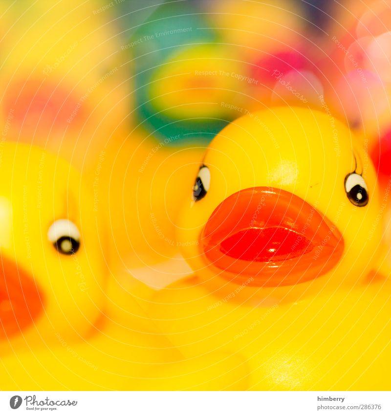 duckface Freude gelb lustig Stil Spielen Lifestyle Kunst Schwimmen & Baden orange Design Freizeit & Hobby Badewanne Fotografie Kunststoff Spielzeug trendy