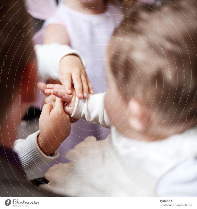 Zum Anfassen Mensch Kind Hand Mädchen Liebe Senior Leben Familie & Verwandtschaft Kindheit Baby Wachstum Beginn lernen Finger Kommunizieren einzigartig