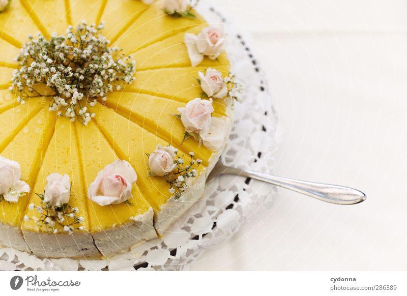 Diät is ab morgen ... schön Liebe Leben Gesundheit Lebensmittel Dekoration & Verzierung Hochzeit ästhetisch Ernährung süß einzigartig Kreativität Idee genießen