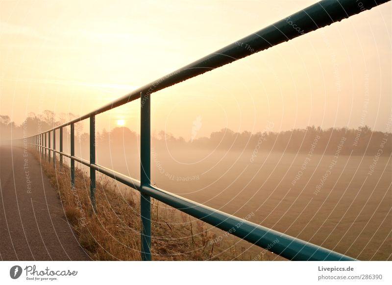 da Zaun Umwelt Natur Landschaft Himmel Wolkenloser Himmel Sonne Sonnenaufgang Sonnenuntergang Sonnenlicht Herbst Schönes Wetter Nebel Pflanze Baum Gras