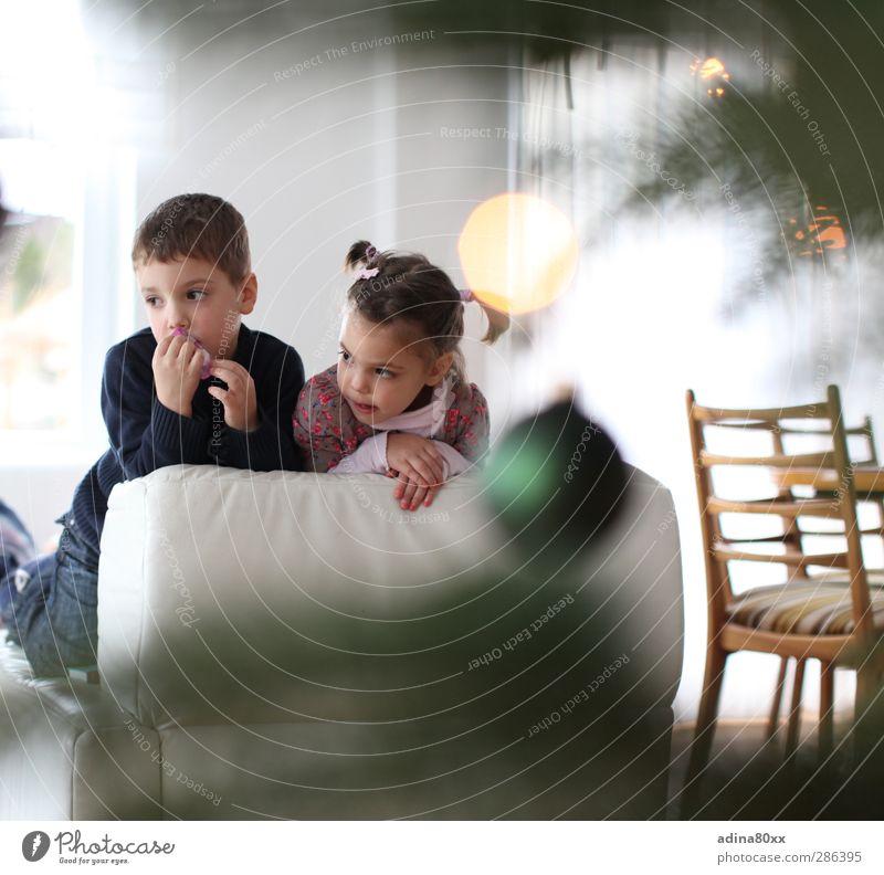 Weihnachten Winter Feste & Feiern Weihnachten & Advent Kindererziehung Bildung Mädchen Junge Geschwister Bruder Schwester beobachten Denken träumen warten