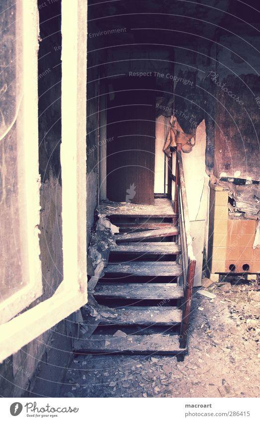 verlassen Stadtrand Menschenleer Haus Bauwerk Gebäude Architektur Fenster Stein Holz Glas alt kaputt retro Einsamkeit Reichtum Häusliches Leben Ruine Bauschutt