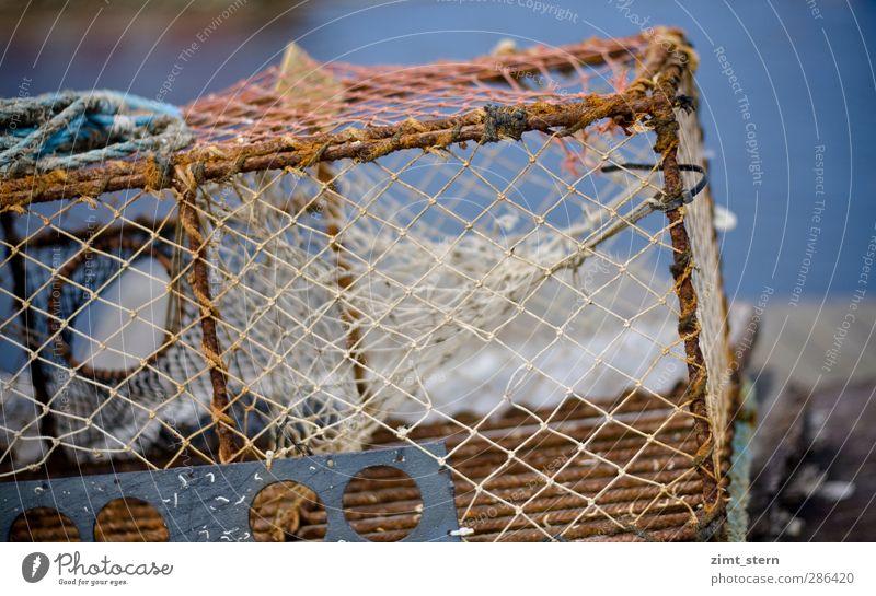 Netze blau Küste braun Arbeit & Erwerbstätigkeit liegen Insel leer Seil kaputt Fisch Netz Beruf Schifffahrt Rost Angeln Werkzeug