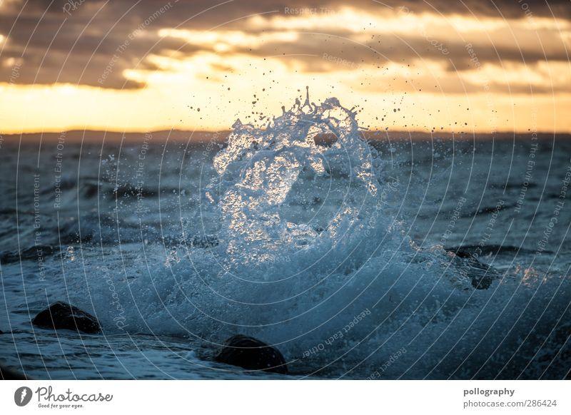 splash Freiheit Meer Wellen Natur Landschaft Wasser Wassertropfen Himmel Wolken Sonnenaufgang Sonnenuntergang Sommer Herbst Wetter Schönes Wetter Wind Küste