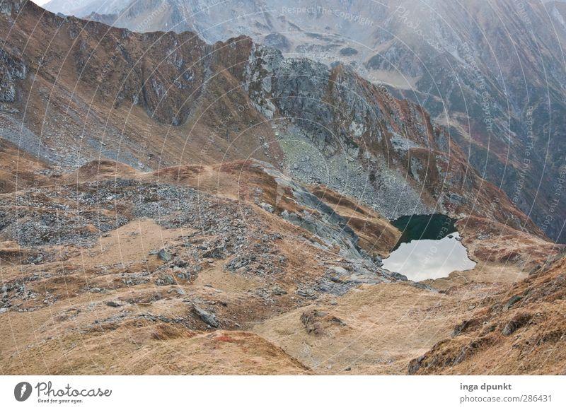 Oase in der Felswüste Umwelt Natur Landschaft Urelemente Erde schlechtes Wetter Felsen Berge u. Gebirge Seeufer Gebirgssee Karpaten Rumänien Siebenbürgen