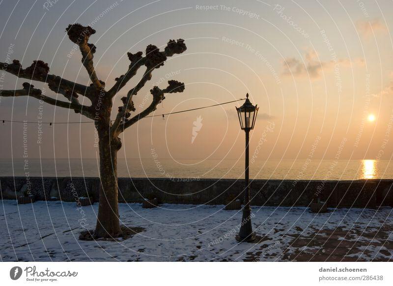 Laterne, Laterne ... Landschaft Himmel Horizont Sonnenlicht Winter See gelb Ruhe Stille Bodensee Farbfoto Textfreiraum rechts Abend Licht Sonnenstrahlen