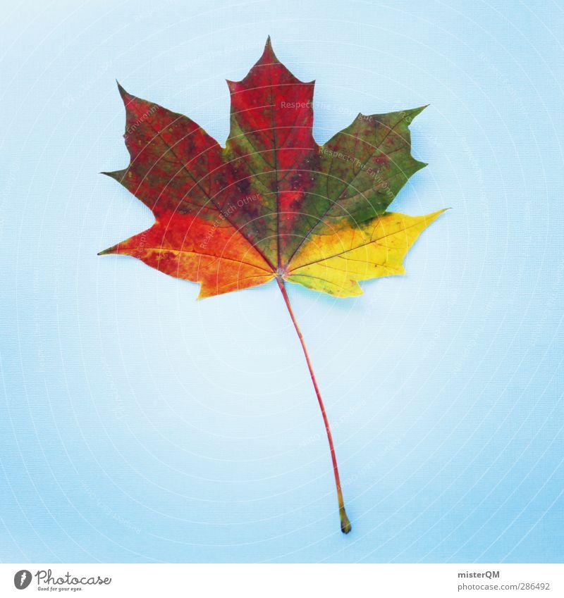 CMYK-horn. Kunst Natur ästhetisch mehrfarbig Herbstlaub herbstlich Herbstbeginn Herbstfärbung Herbstlandschaft Herbststurm Blatt gelb blau rot grün Farbenspiel