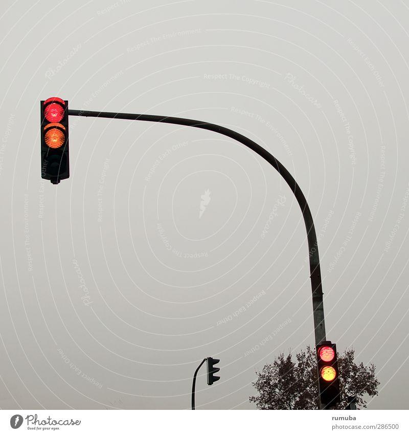 Lichtsignalanlage Fahrschule Himmel Verkehr Verkehrswege Straßenverkehr Autofahren Ampel Zeichen Verkehrszeichen gelb rot Überwachung LSA Ampelmast Baum