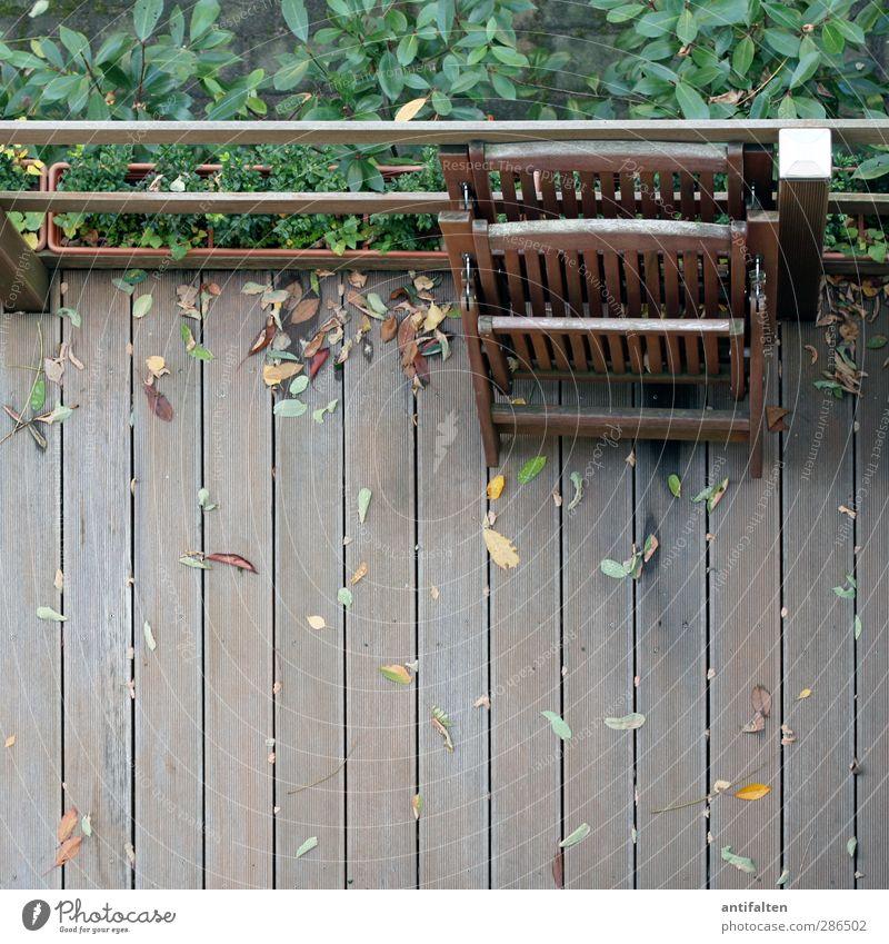 Nachbars Terrasse Natur Pflanze Herbst Wetter Schönes Wetter schlechtes Wetter Regen Baum Sträucher Blatt Haus Garten Stuhl Gartenmöbel 2 Blumenkasten Holz