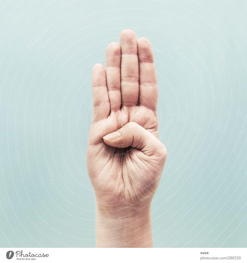 4 Gerade und 1 Geknickter Haut Arme Hand Finger Zeichen Kommunizieren Coolness einfach hell trendy Verantwortung achtsam Handfläche Halt flach stoppen hell-blau