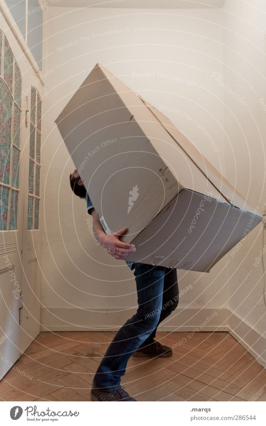 1500 | Schwere Last Häusliches Leben Wohnung Umzug (Wohnungswechsel) Innenarchitektur Mensch maskulin Erwachsene Kasten Karton Umzugskarton Zeichen gehen tragen