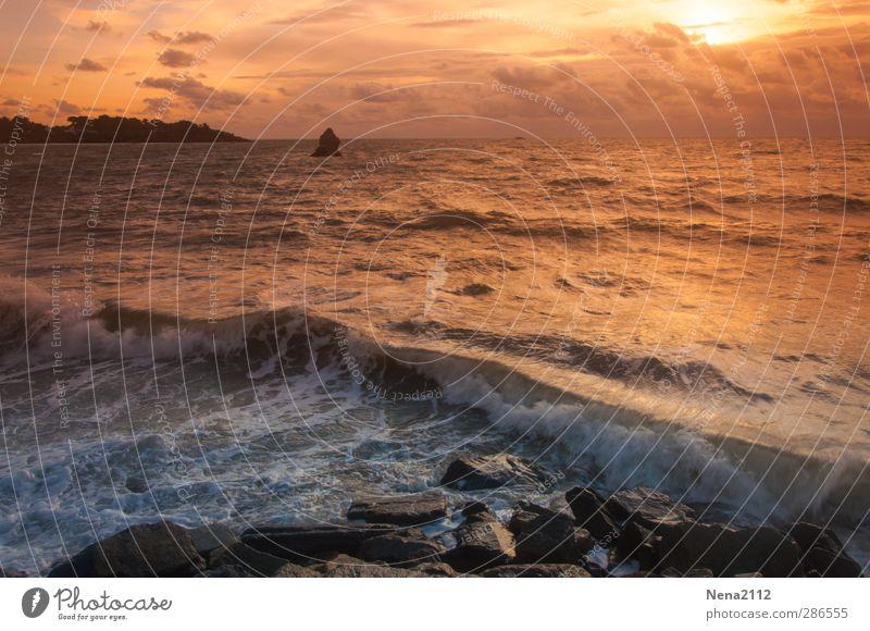 When the sun is going down... Natur Landschaft Wasser Wolken Wind Küste Bucht Meer Unendlichkeit gelb gold orange Frankreich Bretagne Wellen Luft