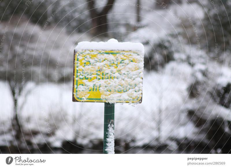 irgendetwas verbotenes... Baum Winter Schnee Schwimmen & Baden See Schneefall Eis Park Schilder & Markierungen Schriftzeichen Hinweisschild bedrohlich Frost
