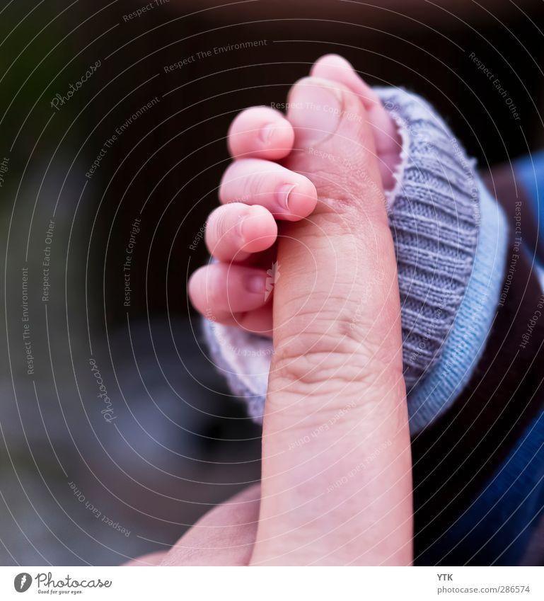 Hold on Mensch Kind Mann Hand Erwachsene Liebe Leben Gefühle Familie & Verwandtschaft Kindheit Kraft Baby Finger niedlich Hoffnung berühren