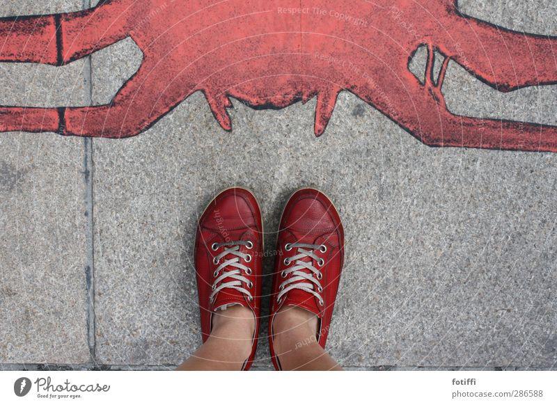 Schuh' Mode Leder Schuhe Turnschuh sportlich grau rot weiß Tapferkeit Mut ruhig Schuhbänder stehen herab blicken Farbstoff Pflastersteine Spinne