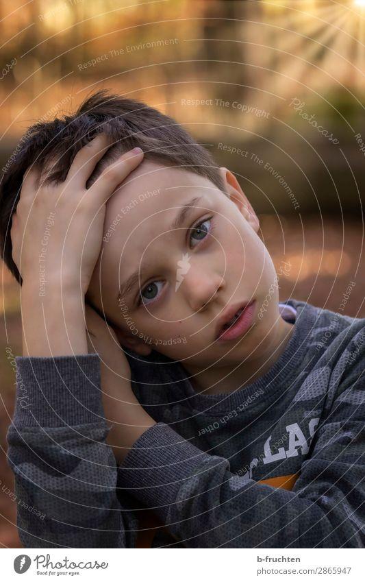 Kind, Müde, Wald, Wanderung, Freizeit & Hobby Abenteuer wandern Kindheit Gesicht 1 Mensch 8-13 Jahre Sonne Frühling Herbst Schönes Wetter Langeweile Freude