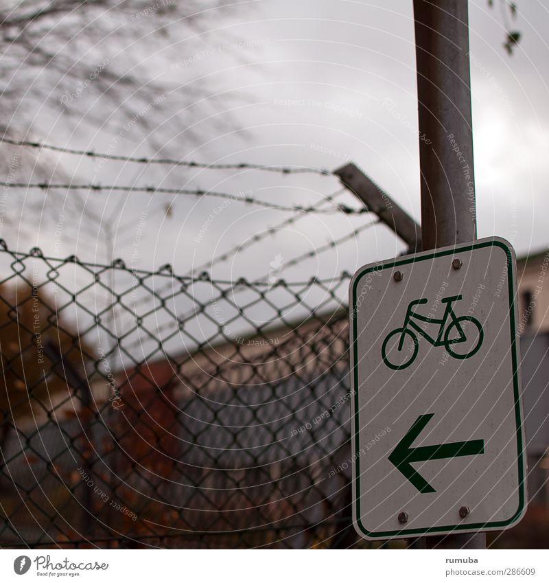 Fahrradroute Natur Sport Bewegung Wege & Pfade Gesundheit Zufriedenheit Schilder & Markierungen Ausflug Hinweisschild Zeichen Fahrradfahren Pfeil Textfreiraum