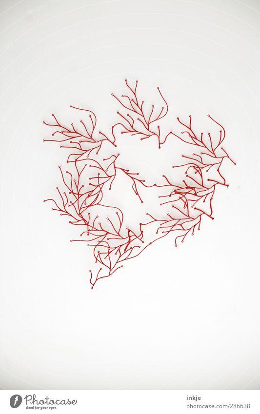 Krumme Dinger (Auflösung) Natur weiß rot Linie Kunst Wachstum Ordnung Dekoration & Verzierung ästhetisch Kreis Netzwerk Kunststoff Netz Mitte dünn Skulptur