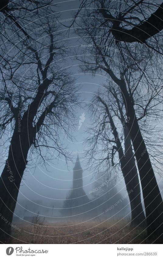 sleepy hollow Kultur Herbst Nebel Baum Kirche Turm Bauwerk Gebäude Architektur gruselig unheimlich Religion & Glaube bedrohlich Silhouette Brandenburg Dorf