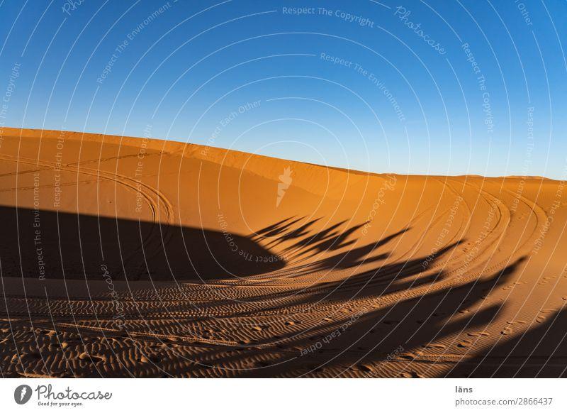 Karawane lll Marokko Wüste Dromedar Kamel Schatten Sand