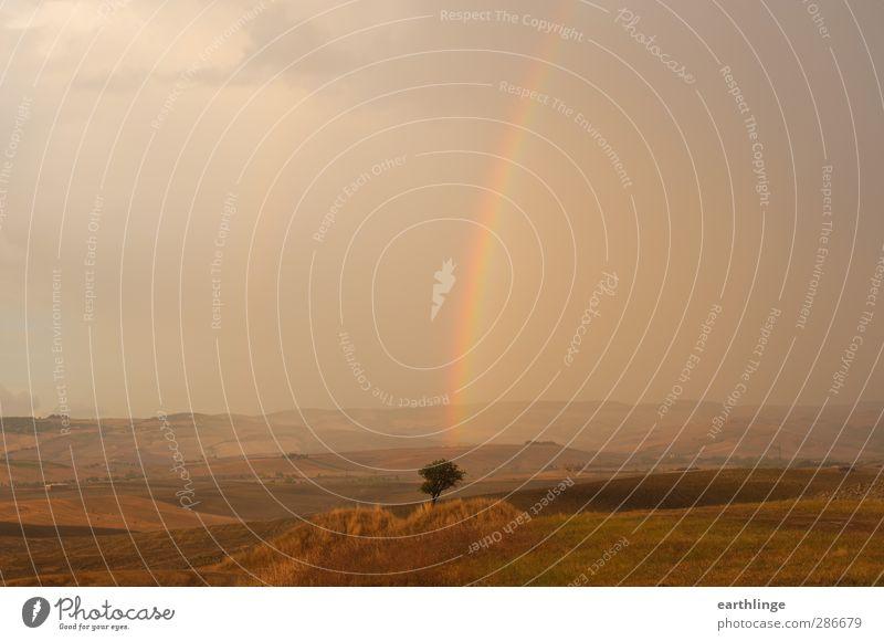 Am Ende des Regenbogens Tourismus Sommer Umwelt Natur Landschaft Urelemente Erde Luft Wassertropfen Himmel Wolken Sonnenlicht Wetter Baum Feld Hügel