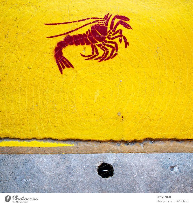 Mrs. Crab. X Kunst Tier 1 Zeichen Schilder & Markierungen Hinweisschild Warnschild Graffiti verrückt Stadt gelb Straßenkunst Hummer Fisch Lebensmittel