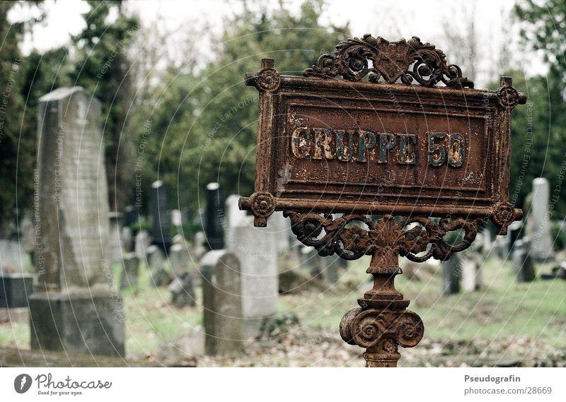 Gruppe 50 Friedhof Wien Grabstein historisch Schilder & Markierungen Rost