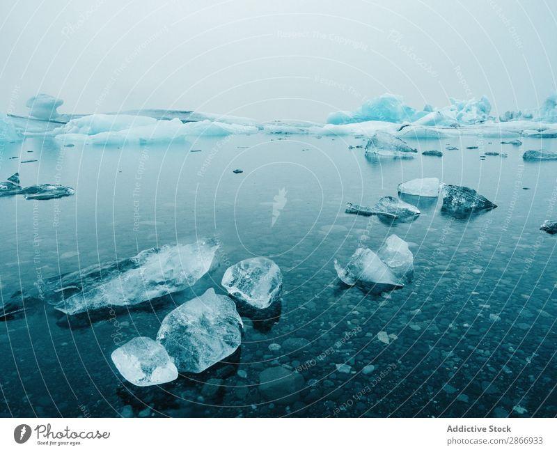 Eis und Schnee auf dem Wasser Oberfläche Küste Island groß kalt Winter Natur weiß Landschaft gefroren Jahreszeiten Frost Norden Wetter Ferien & Urlaub & Reisen