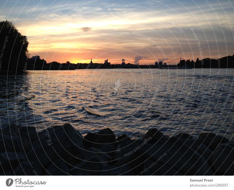 cologne sunset Landschaft Wasser Himmel Sonnenaufgang Sonnenuntergang Sonnenlicht Sommer Küste Flussufer Köln Cologne Stadt Stadtrand Skyline Brücke Ferne frei