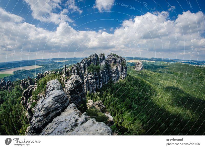 Schrammsteine in der Sächsischen Schweiz Natur blau grün Sommer Baum Landschaft Wolken Berge u. Gebirge Umwelt Felsen Schönes Wetter Gipfel Klettern Sehenswürdigkeit Bergsteigen Weitwinkel