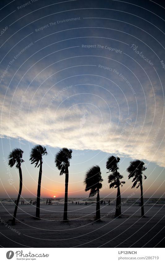 Six on da beach. XI Mensch Natur Ferien & Urlaub & Reisen Meer Strand Wolken Landschaft Erholung Ferne Umwelt Sand Menschengruppe Horizont Wind Tourismus USA