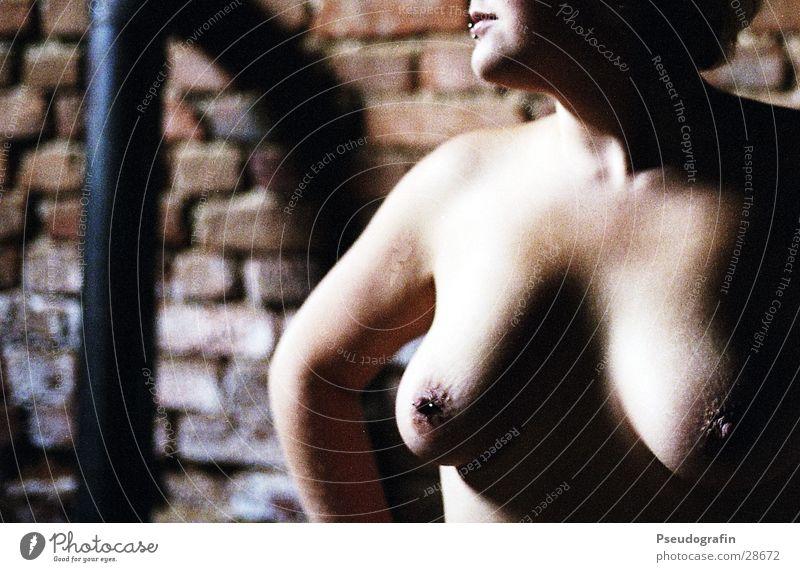 ofenrohr! Körper Haut Mensch feminin Junge Frau Jugendliche Erwachsene Mund Lippen Brust Frauenbrust Arme 1 18-30 Jahre Ruine Mauer Wand Piercing Backstein