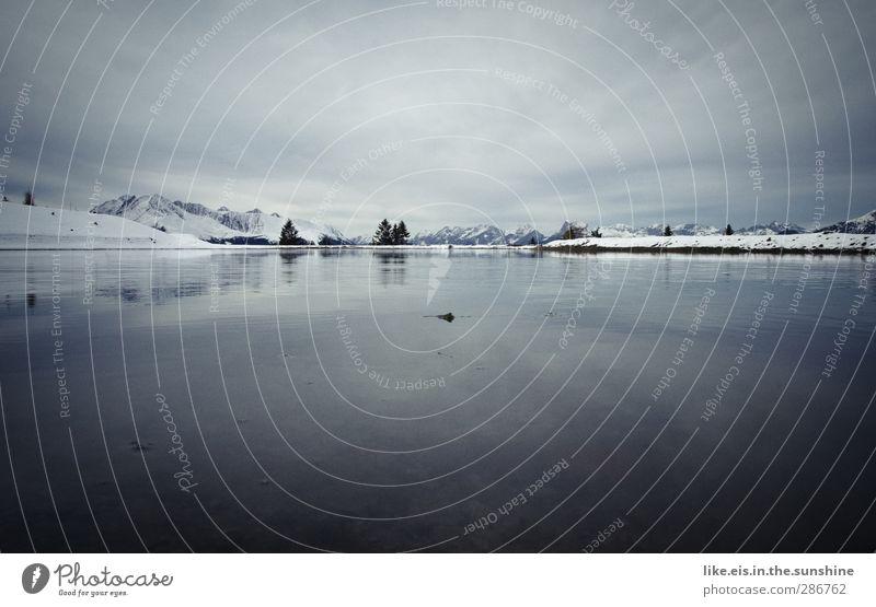 stille. Umwelt Natur Landschaft Himmel Horizont Winter Klima Schönes Wetter Nebel Eis Frost Schnee Schneefall Alpen Berge u. Gebirge Gipfel