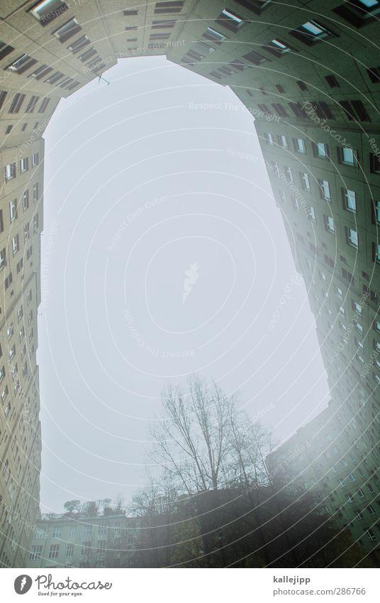 n Stadt Haus Architektur Mauer Wand Fenster Häusliches Leben grotte Hochhaus Plattenbau Wohnsiedlung Baum Nebel bewohnt Miete Wohnung Berlin Farbfoto