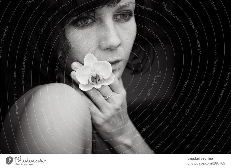 wende der zeit schön Gesicht Wellness harmonisch Wohlgefühl Sinnesorgane ruhig Frau Erwachsene 1 Mensch 18-30 Jahre Jugendliche Orchidee Blüte brünett Locken