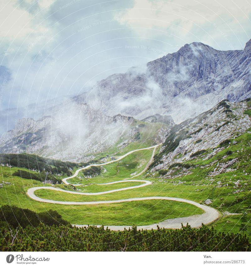 Es geht noch höher... Ferien & Urlaub & Reisen Berge u. Gebirge wandern Natur Landschaft Himmel Wolken Sommer Nebel Pflanze Gras Sträucher Felsen Alpen Gipfel