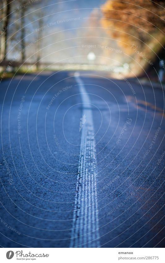 Straßenstrich Ferien & Urlaub & Reisen Ausflug Natur Landschaft Wald Verkehr Verkehrswege Straßenverkehr Wege & Pfade Fahrzeug PKW nass Landstraße Linie