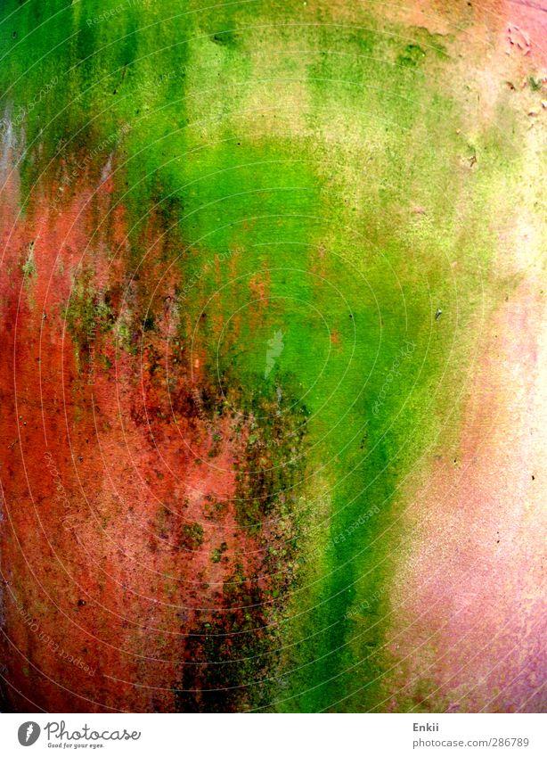 Blumentopf Garten Natur Topfpflanze Stein alt dreckig grün orange rosa rot Vergänglichkeit Terrakotta Schmiererei verfaulen Farbfoto mehrfarbig Außenaufnahme