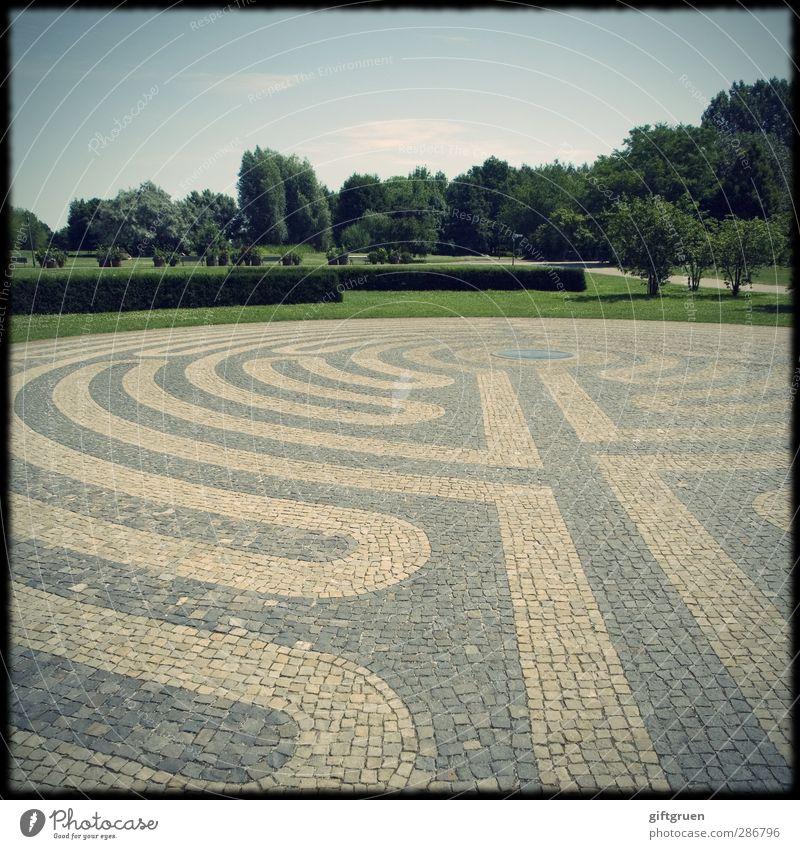 labyrinth Park Wiese außergewöhnlich grün Platzangst Labyrinth Strukturen & Formen Hecke Pflanze Baum Pflastersteine Bodenbelag gepflegt Kopfsteinpflaster Kreis