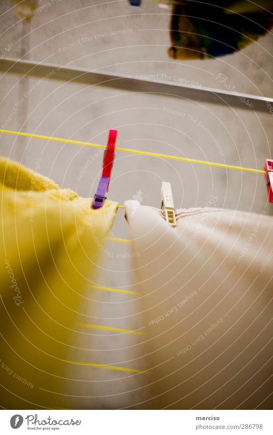 Wäscheleine Wachstum Nass Trocken Wäsche Waschen Trocknen Keller  Waschmaschine Wäscherei Wäscheklammern Wäschetrockner Wäschekorb