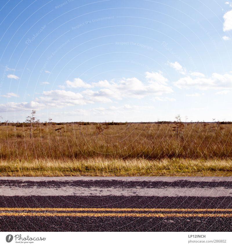Everglades NP-Road. XVII Natur Ferien & Urlaub & Reisen Tier ruhig Landschaft Umwelt Straße Gras Schilder & Markierungen wandern Tourismus Schönes Wetter