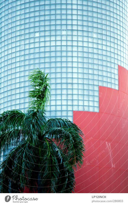 Palm Art Deco. XVIII Ferien & Urlaub & Reisen Stadt rot Haus Wand Architektur Mauer Gebäude Linie außergewöhnlich Fassade modern Design Tourismus