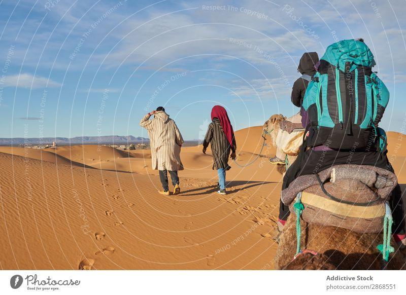 Kamele und Menschen, die in der Wüste unterwegs sind. Marrakesch Marokko Sand Landen gehen