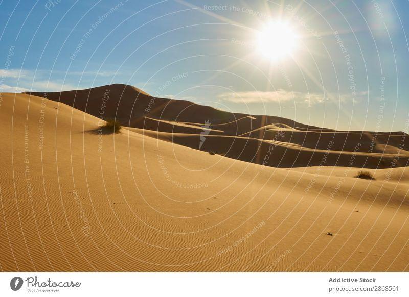 Sanddünen und blauer Himmel mit Sonne Düne Wüste Marrakesch Marokko Himmel (Jenseits) Hügel Wärme heizen Natur Landschaft regenarm Orange heiß Sahara