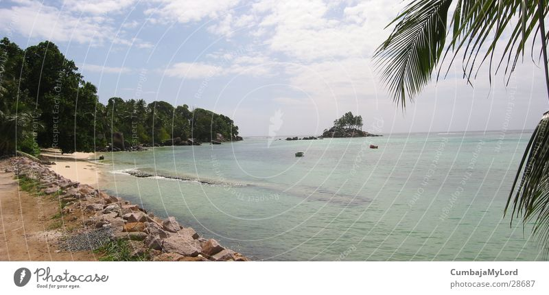 Seychellen Bucht Wasser Meer Strand München Urwald Palme