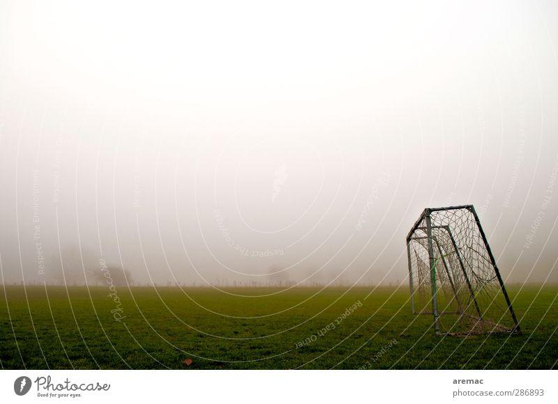 Champions League Sport Ballsport fußballtor Sportstätten Fußballplatz Herbst schlechtes Wetter Nebel Wiese Farbfoto Gedeckte Farben Außenaufnahme Menschenleer